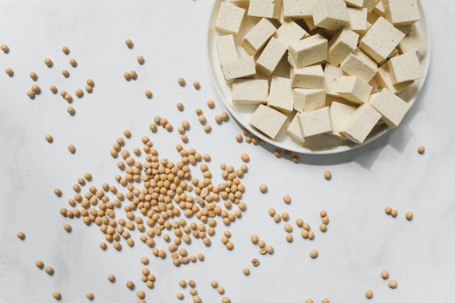 que es el tofu y soja